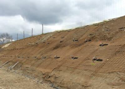 Renaturation et drainage d'une berge à Bellevue