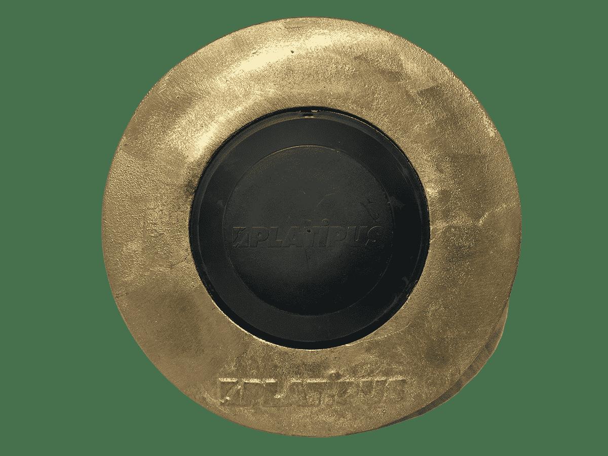 Type de plaque d'ancrage utilisée par Anteq SA - Globus