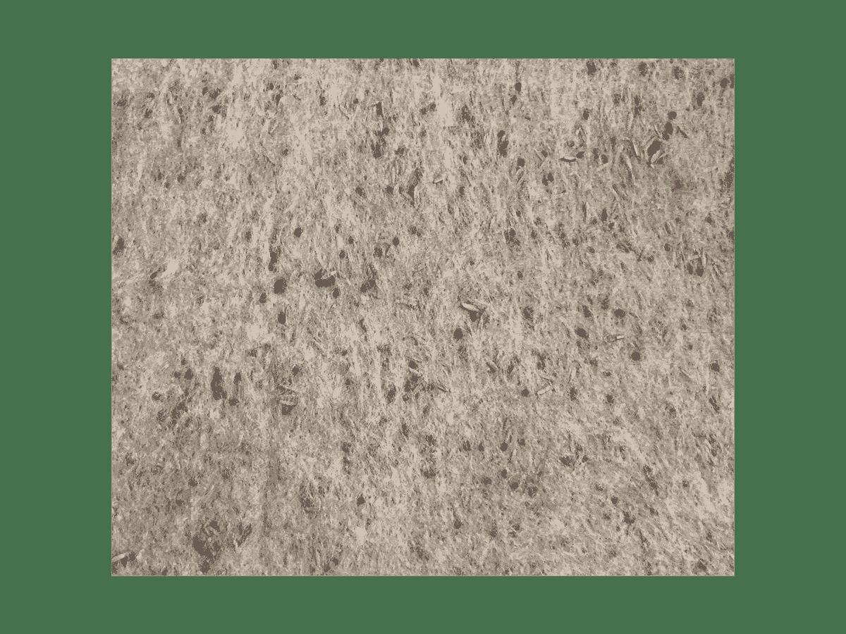 Type de substrat utilisé par Anteq SA - Sementis