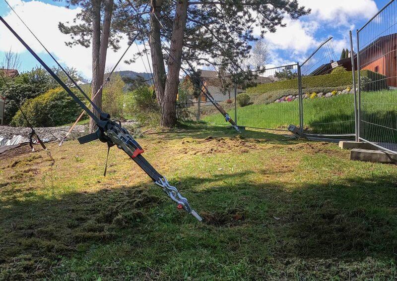 Travaux d'haubanage de plusieurs arbres au Pâquier par Anteq SA